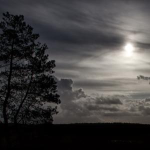 Moorlicht