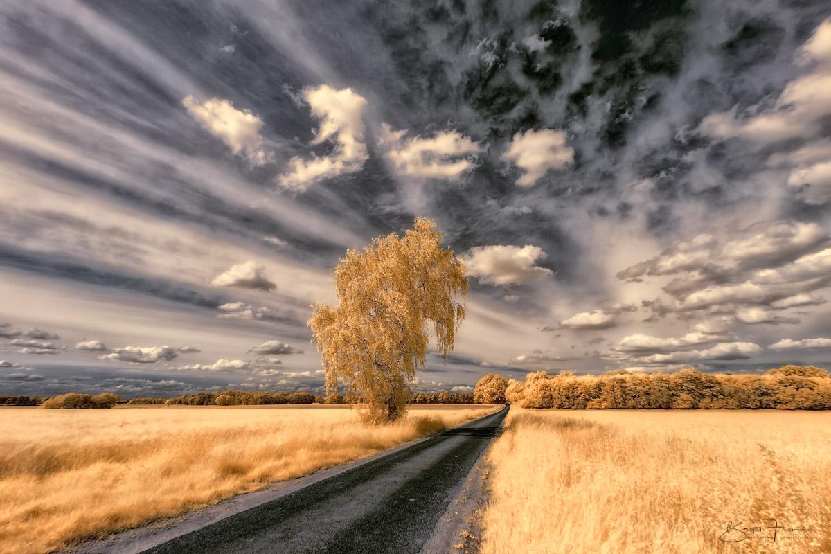 Fliehende Himmel