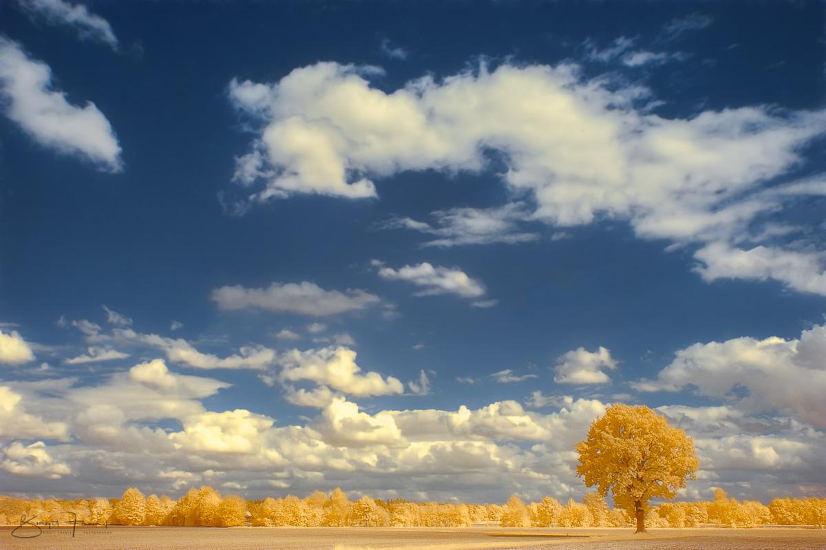 IRre Landschaft
